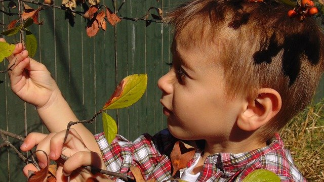 Inspiring Curiosity and Wonder